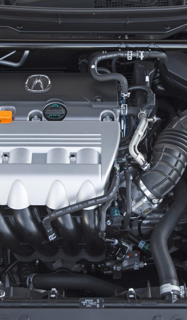 600x1024 2009 Acura Tsx Engine, cars