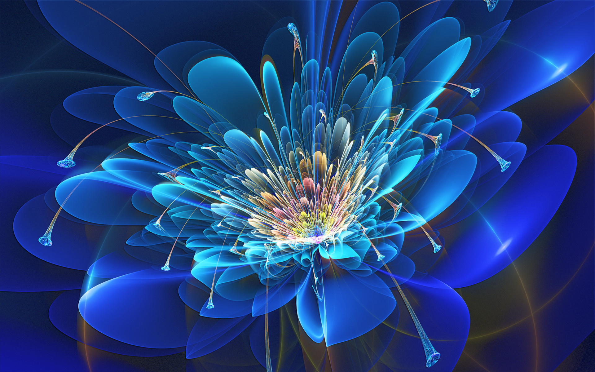 Abstract Fractal Flower Wallpapers Abstract Fractal