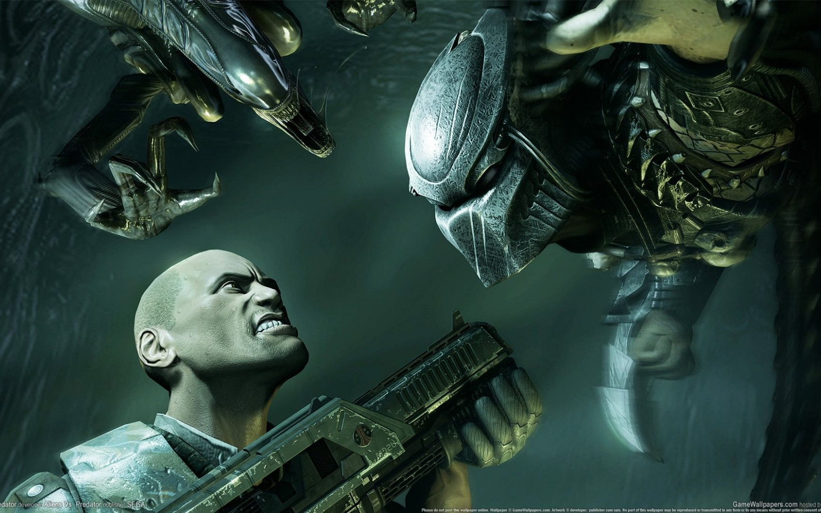 1680x1050 Alien Vs Predator, aliens, console, games
