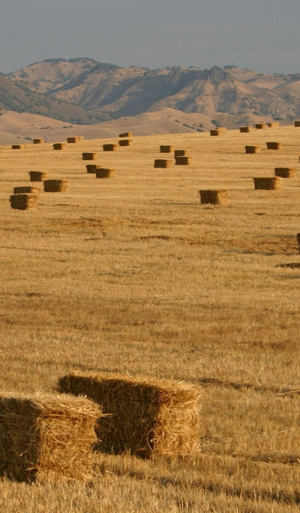 600x1024 amazing hay bales field hills galaxy tab 2 wallpaper. Black Bedroom Furniture Sets. Home Design Ideas