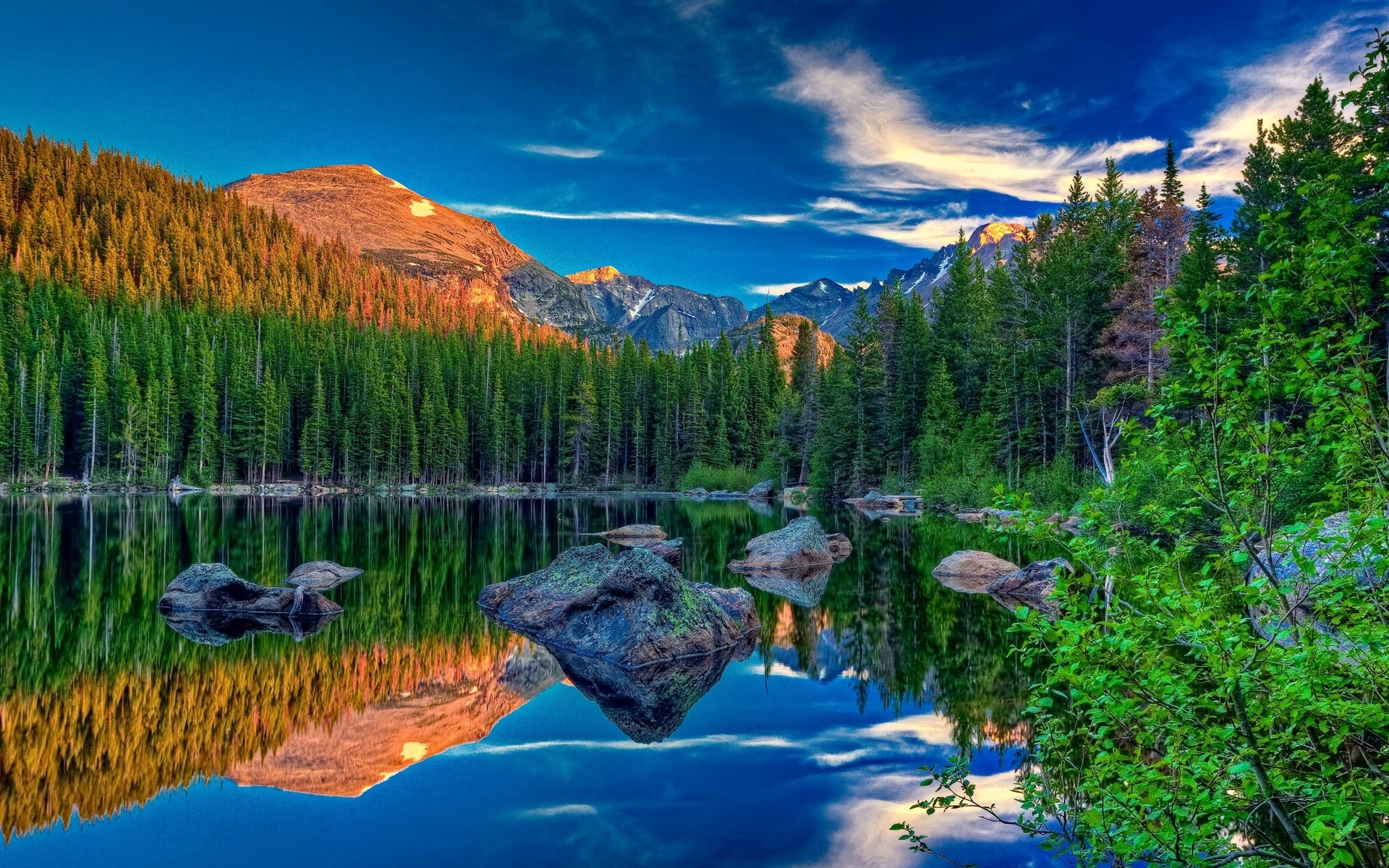 Amazing Pine Forest Lake Rocks Wallpapers