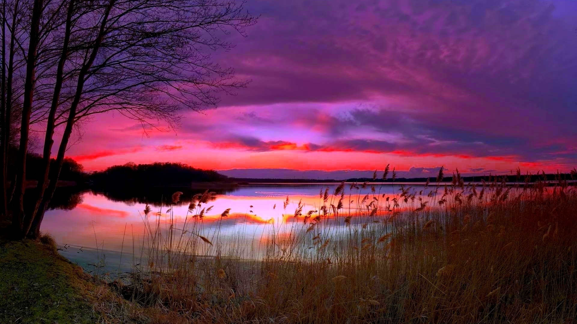 1920x1080 Amazing Purple Sunset Desktop Pc And Mac Wallpaper