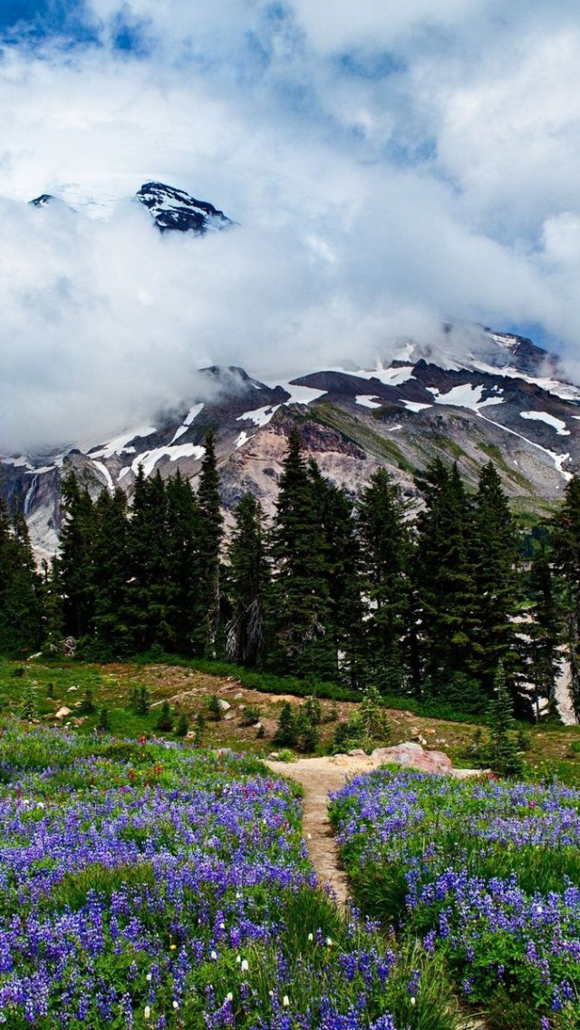 640x1136 Amazing Washington Scenery