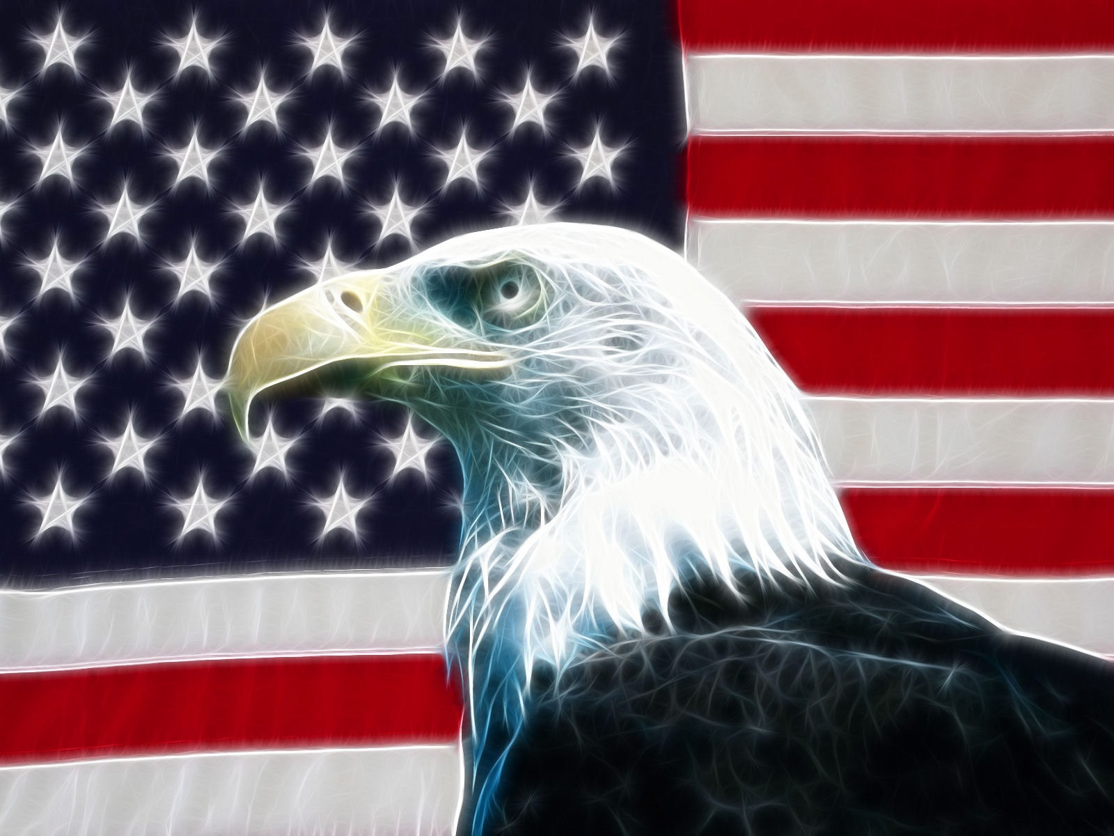 1600x1200 American eagle desktop wallpapers and stock photos