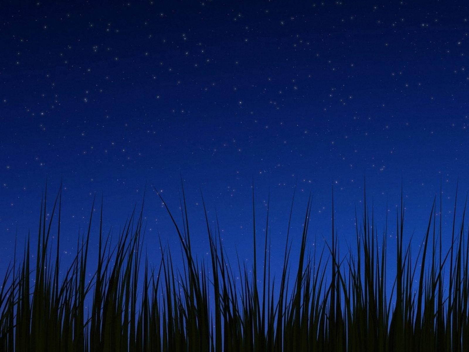 Android 3.0 Night Wallpaper Wallpapers