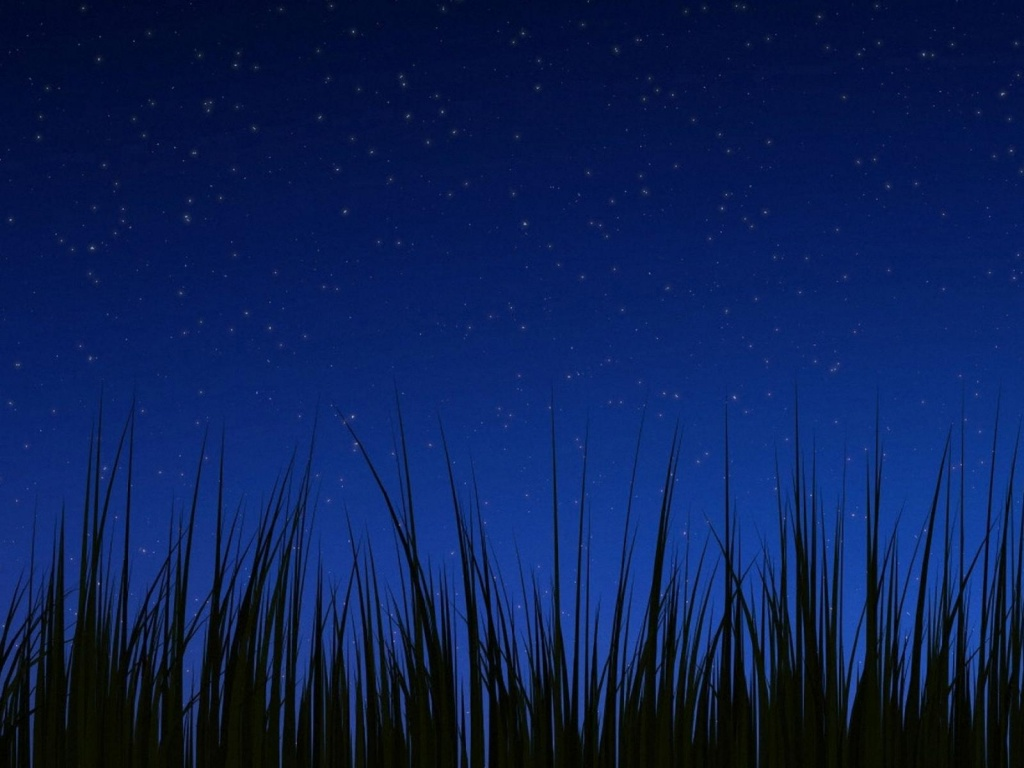1024x768 Android 3.0 night wallpaper desktop PC and Mac ...