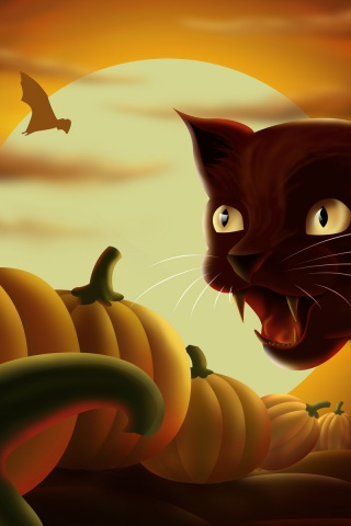 320x480 Angry Cat Iphone 3g Wallpaper