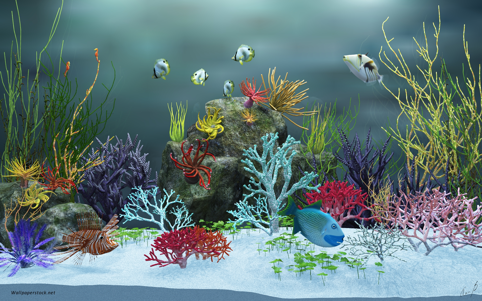 1920x1200 aquarium view ver 2 desktop pc and mac wallpaper