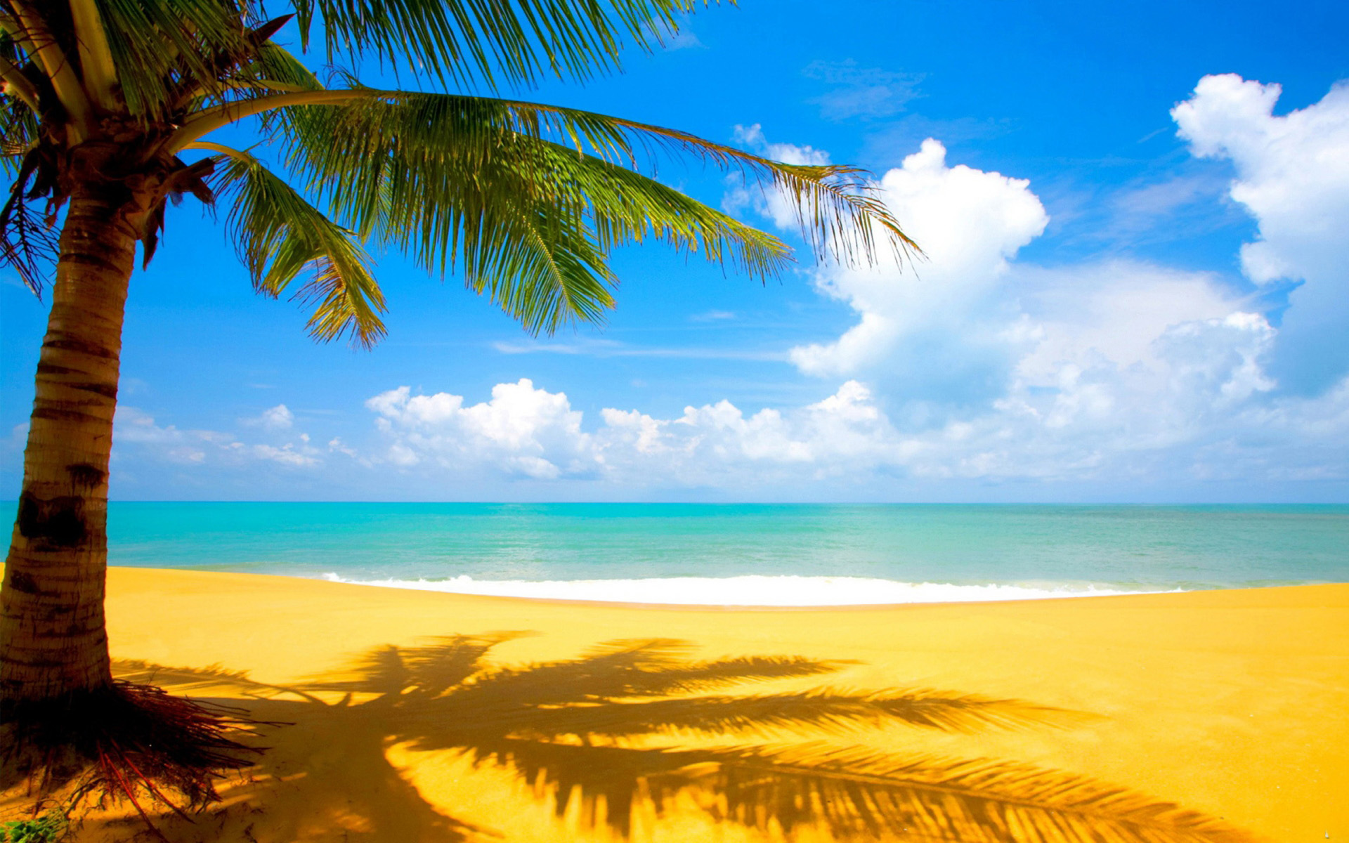 Image Beach And Palm Wallpapers Stock Photos