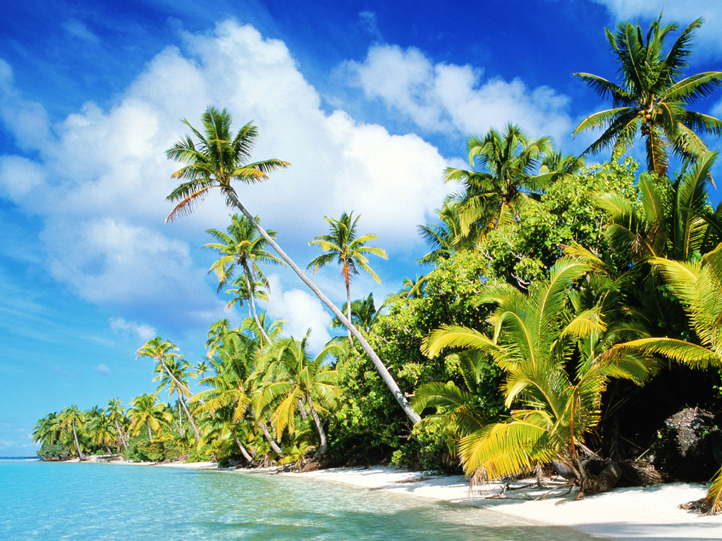 1024 Beach paradise desktop wallpapers and stock photos