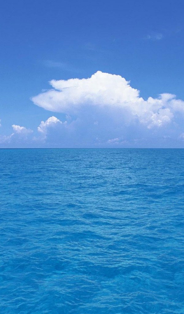600x1024 Beautiful Blue Ocean