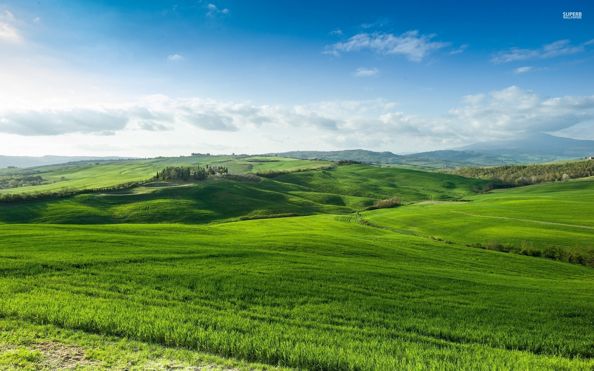 Tuscany Landscape Beautiful Green Hills Lonely Stock Photo ...