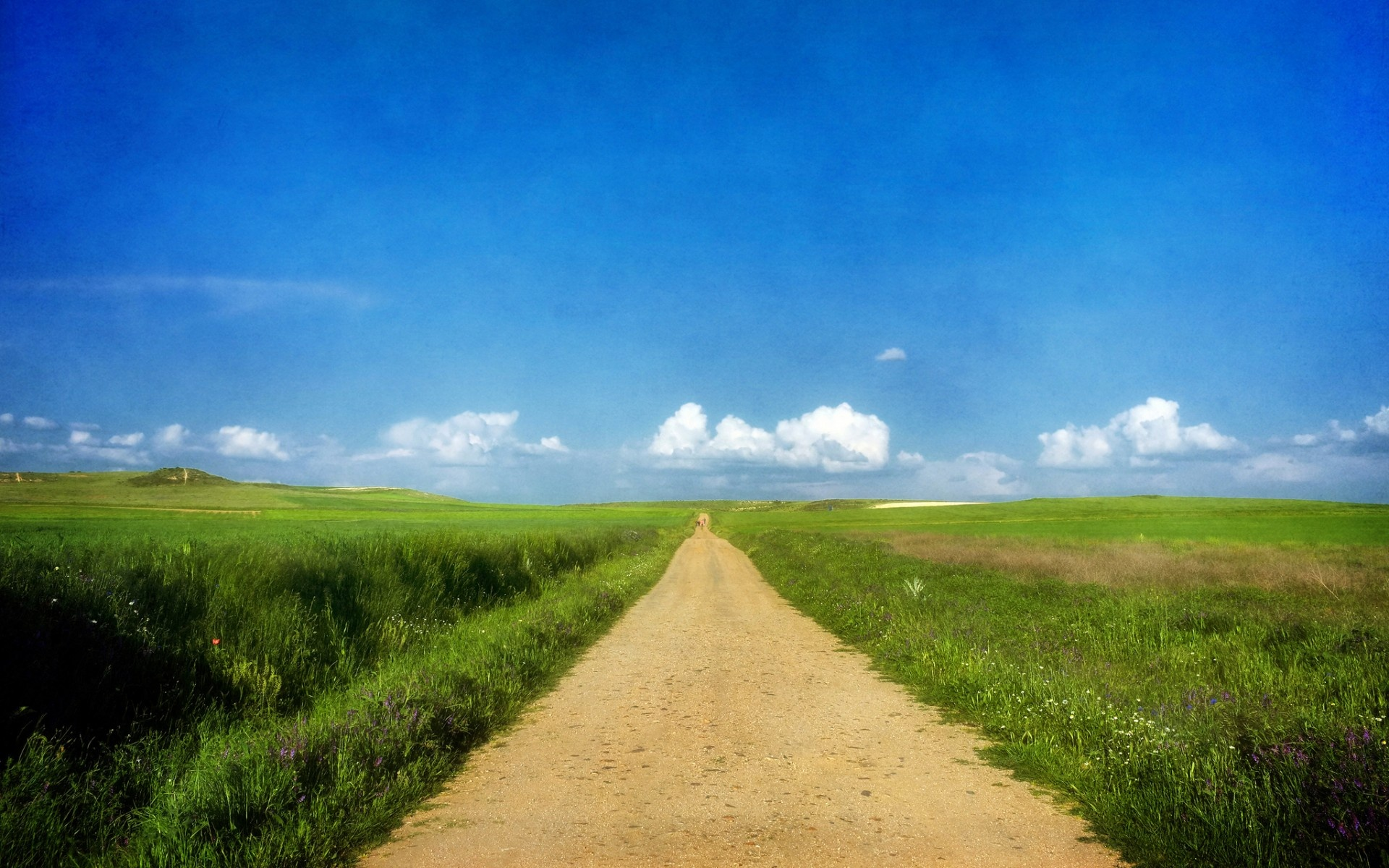 Beautiful Path & Grass Fields wallpapers | Beautiful Path ... | 1920 x 1200 jpeg 723kB