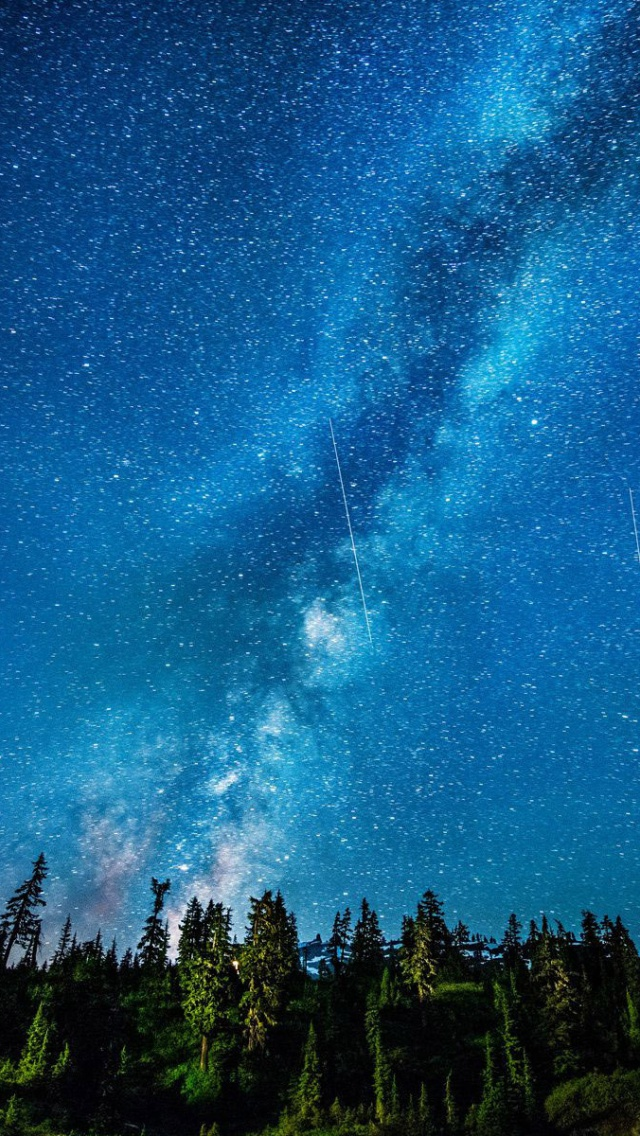Iphone wallpaper blue - 640x1136 Beautiful Starry Sky Amp Forest Iphone 5 Wallpaper