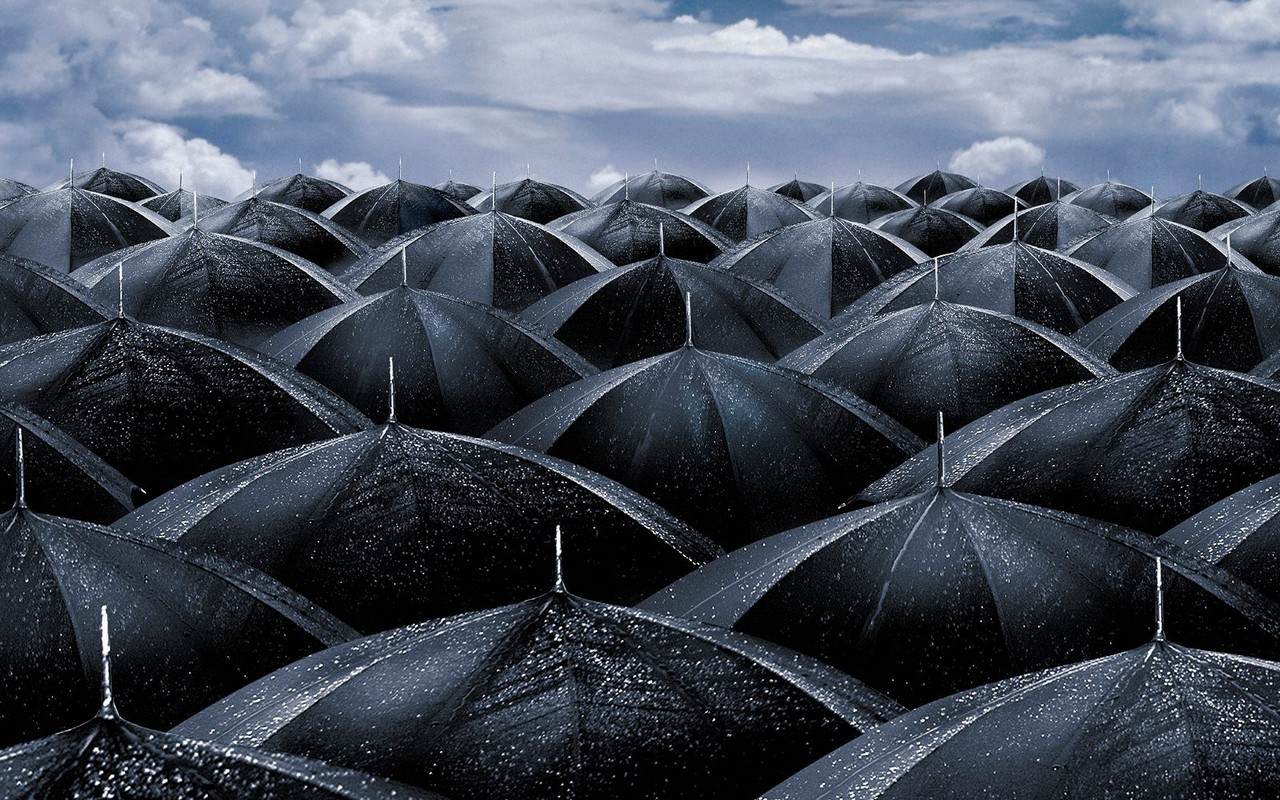 1280x800 Black umbrellas