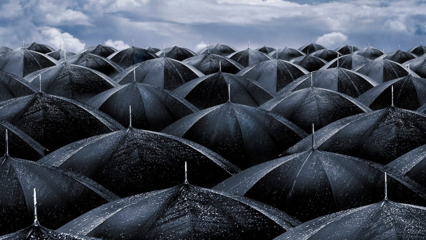 825x315 Black umbrellas