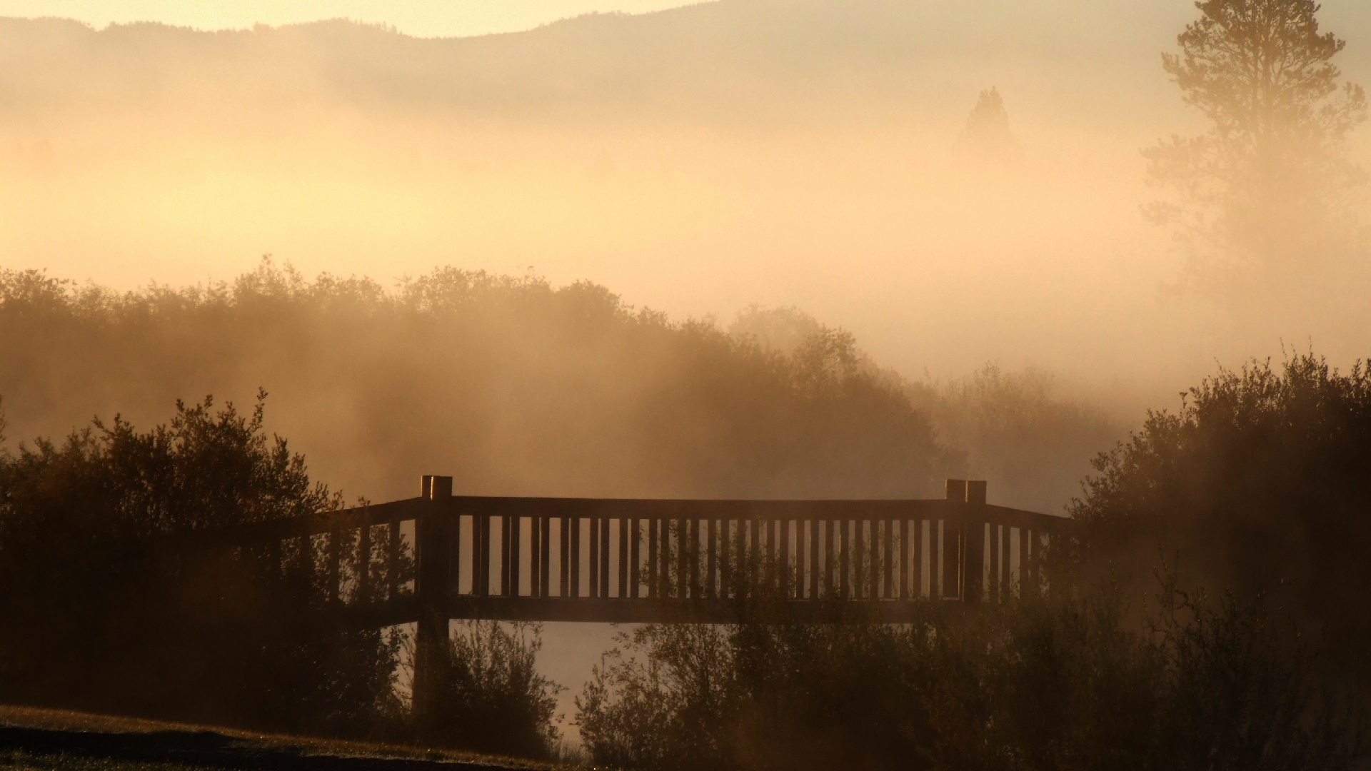Image Bridge In Mist Wallpapers And Stock Photos