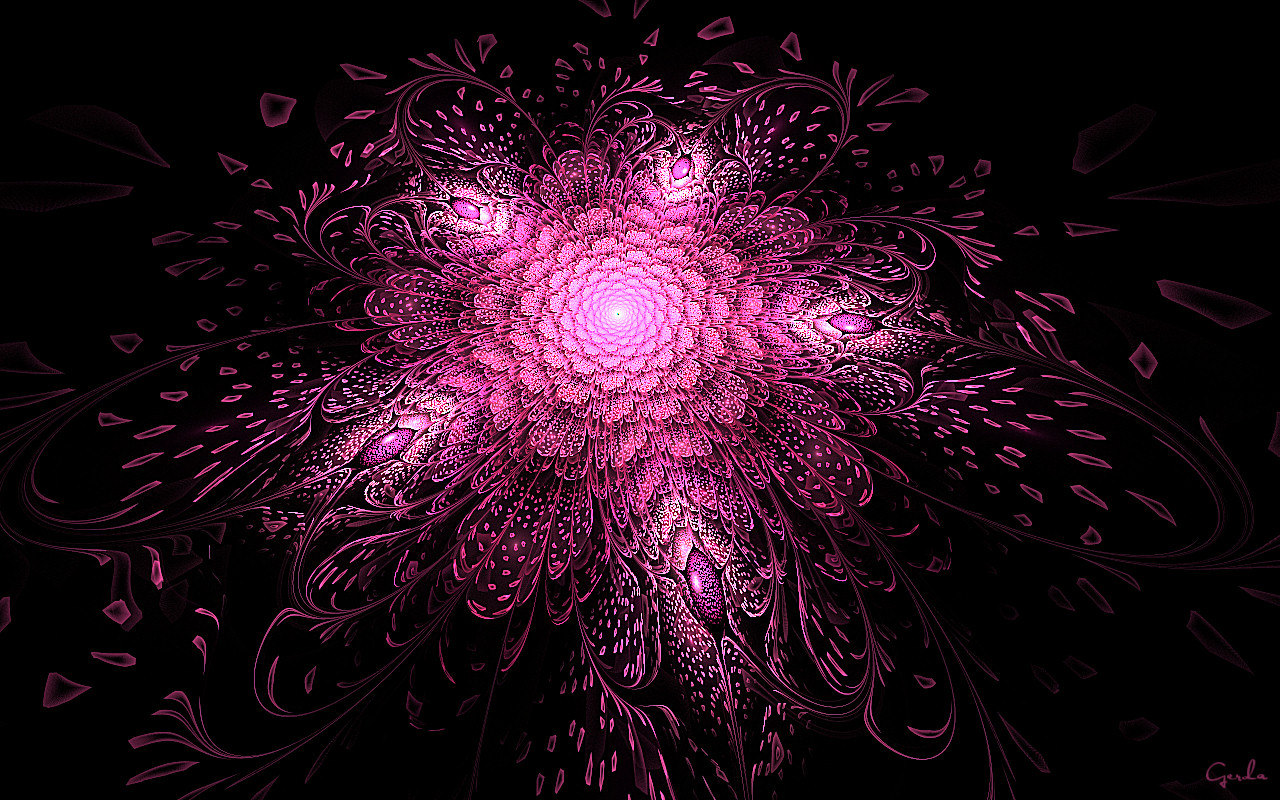 Bright Pink Fractal Flower Wallpapers Bright Pink