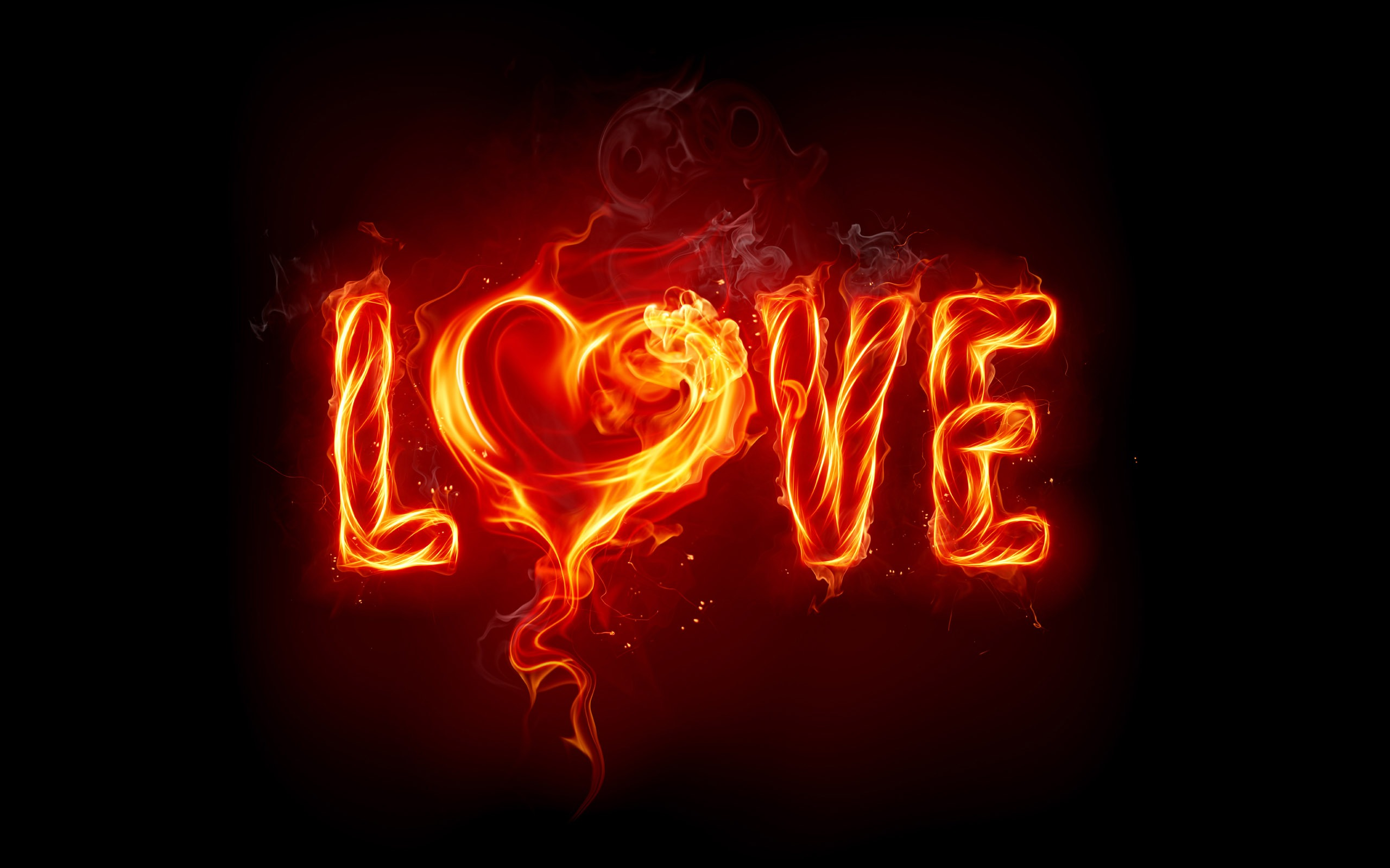 2560x1600 Burning love desktop PC and Mac wallpaper