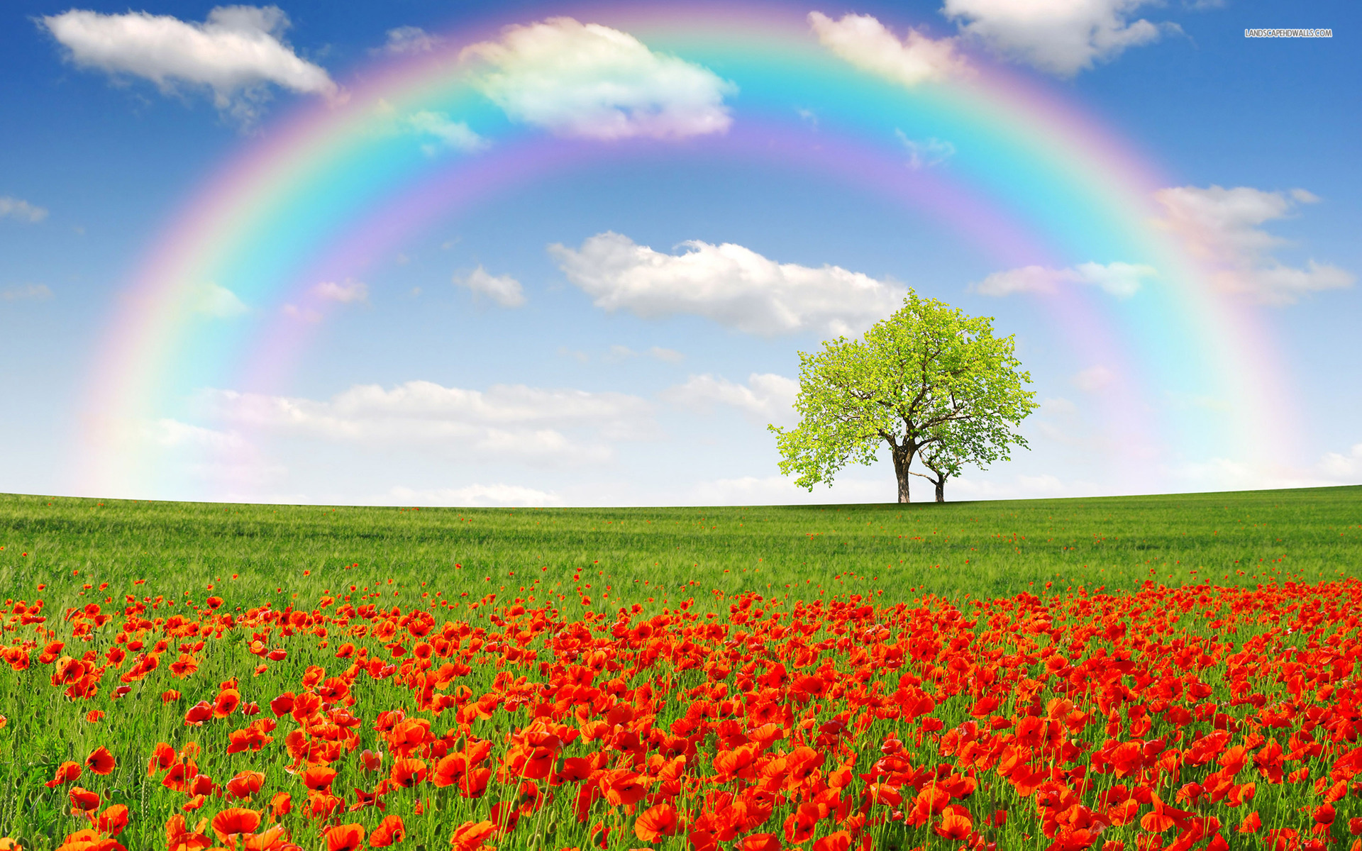 beautiful spring desktop wallpaper rainbow - photo #4