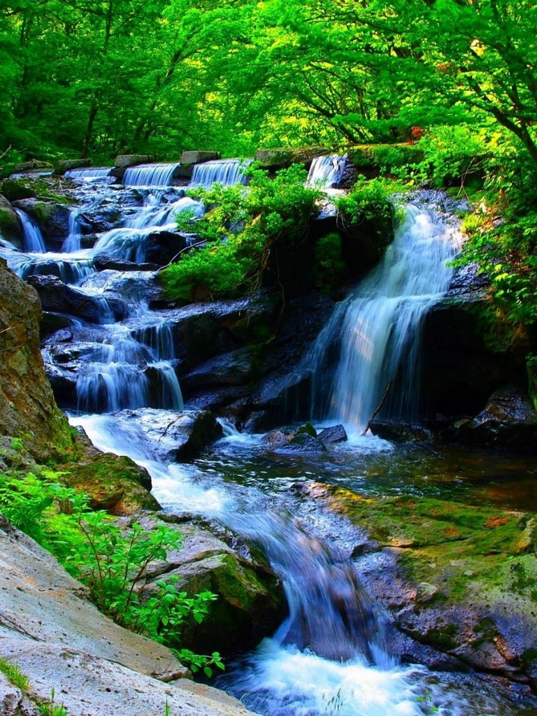 768x1024 Cascading Falls In The Forest Tree Waterfall
