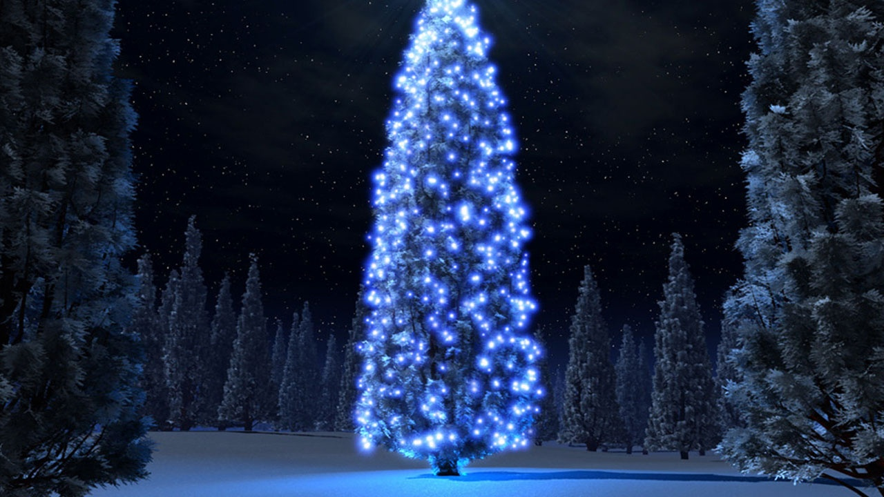 1280x720 Christmas blue tree