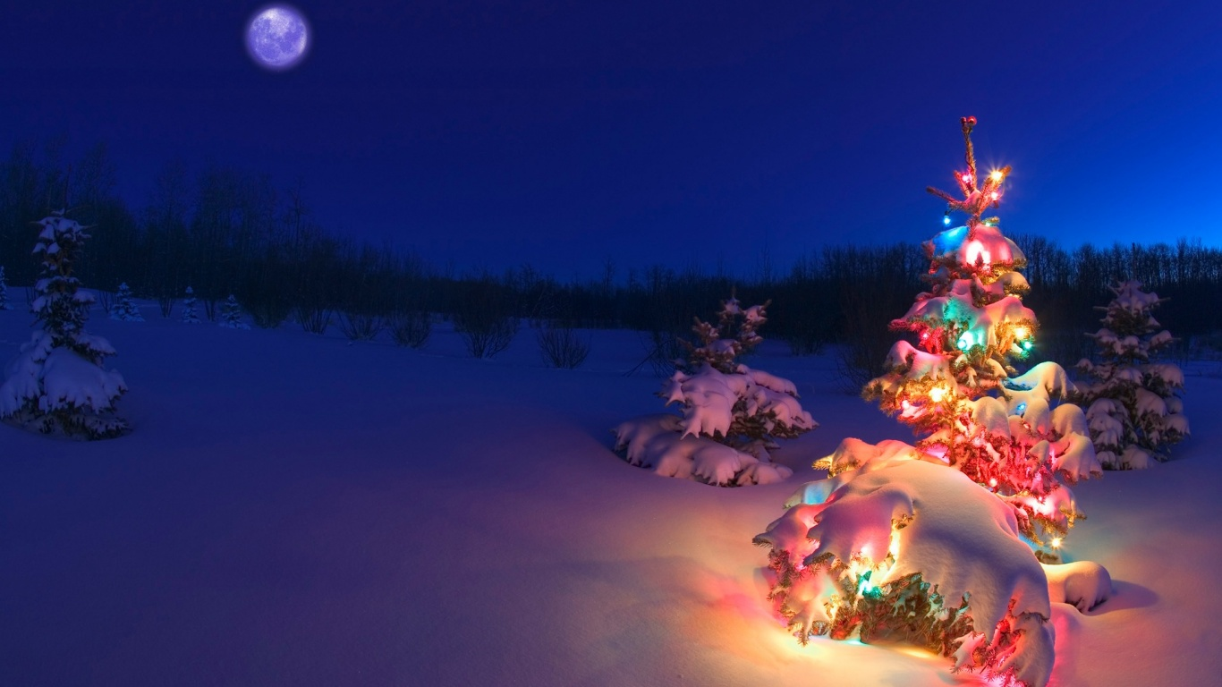 1366x768 christmas tree in the snow desktop pc and mac wallpaper