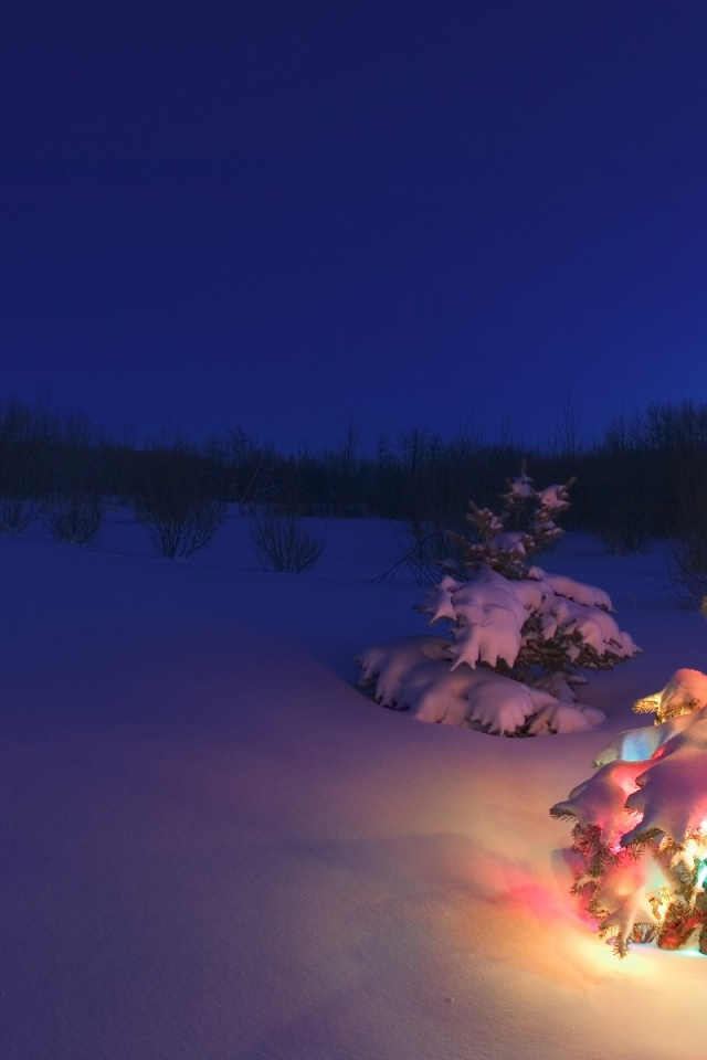 640x960 Christmas Tree In The Snow Iphone 4 Wallpaper