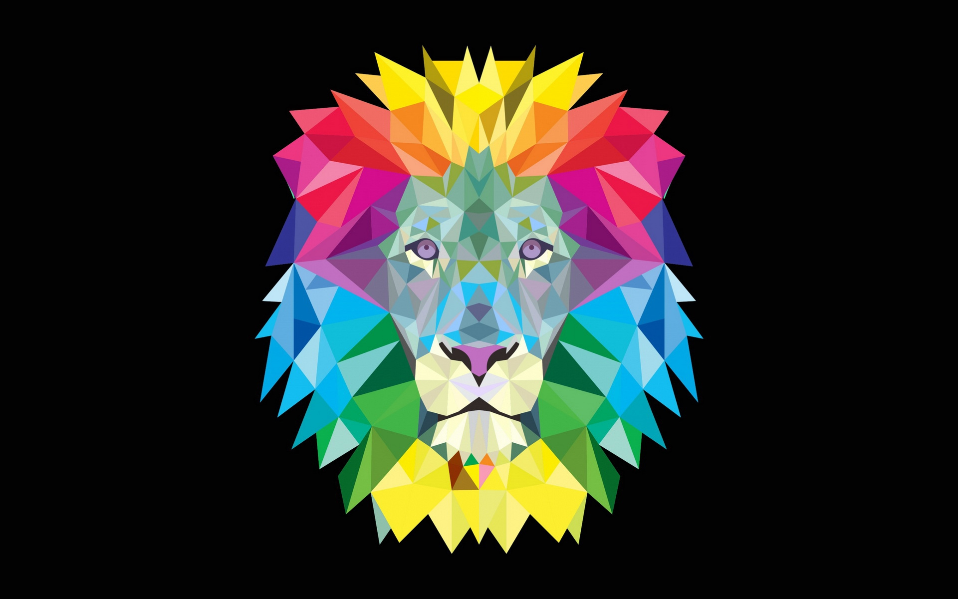 Colorful geometric lion wallpapers colorful geometric - Geometric wallpaper colorful ...