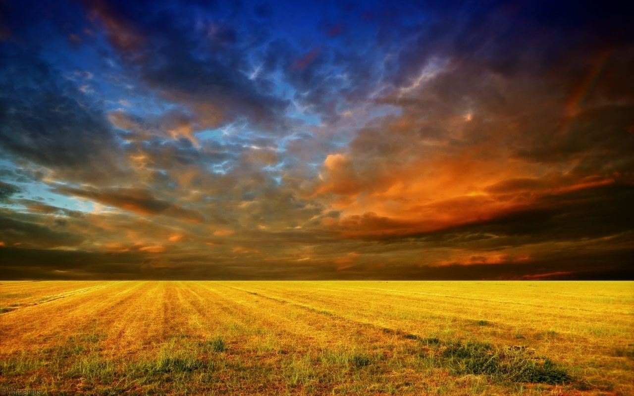 1280x800 Colorful Sky & Field
