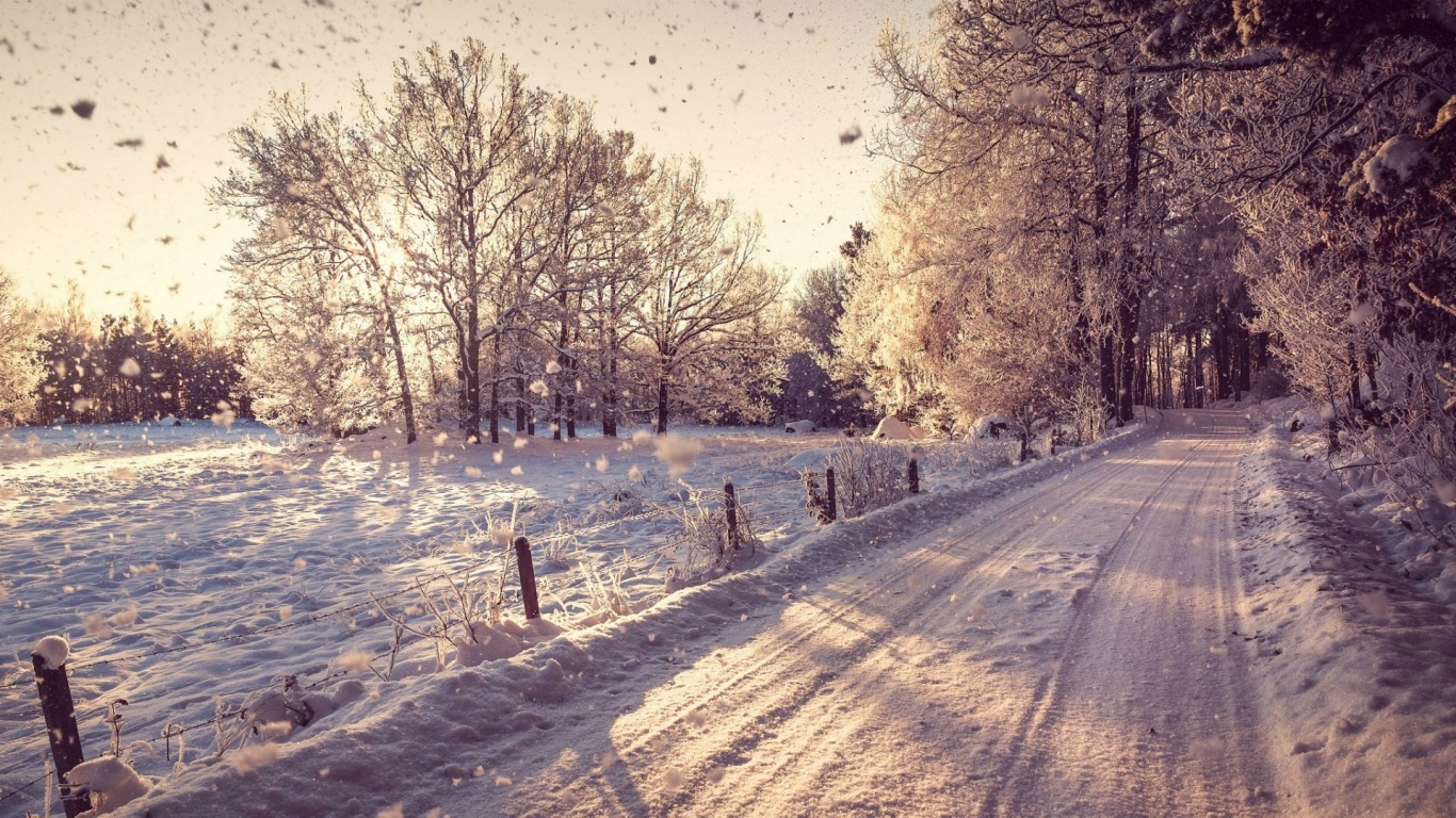 Top Wallpaper Mac Winter - country-road-in-the-winter_wallpapers_35842_1366x768  Perfect Image Reference_30784.jpg