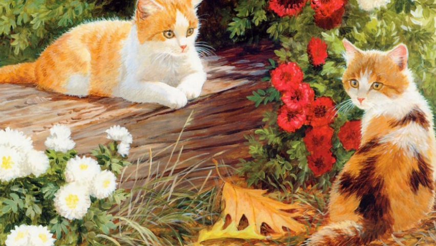 825x315 Cute Kittys White & Red Floral Facebook Cover Photo