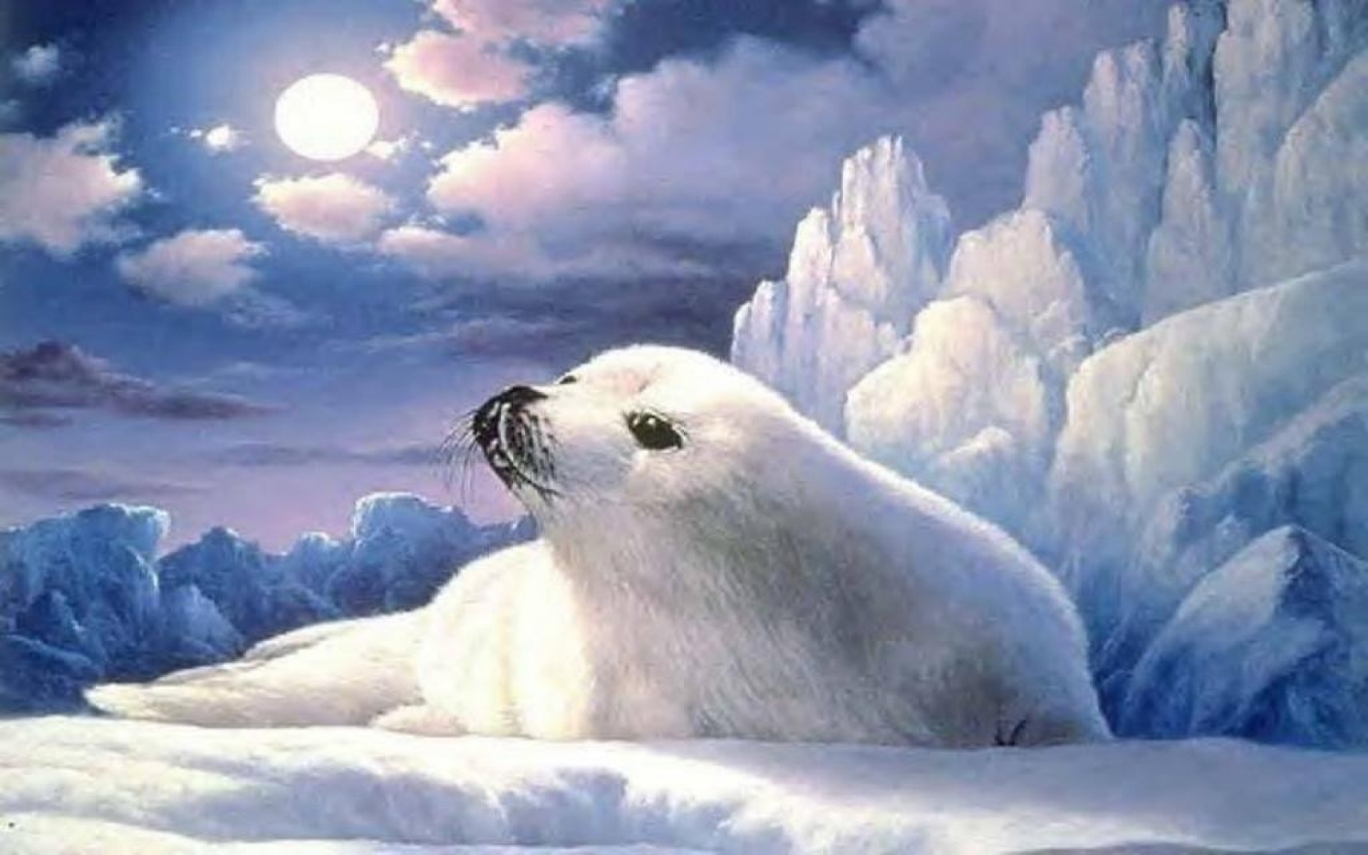Cute Baby Seals 9361 Hd Wallpapers: Cute Lonely Seal Ice Berg Moon Wallpapers