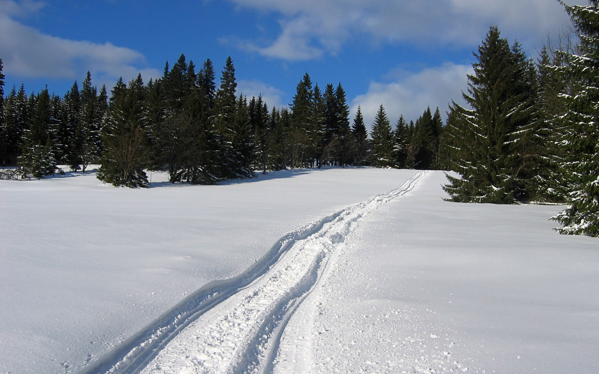 Landscape Photo of a snowy trail at Parfrey's Glen, Wisconsin free ...