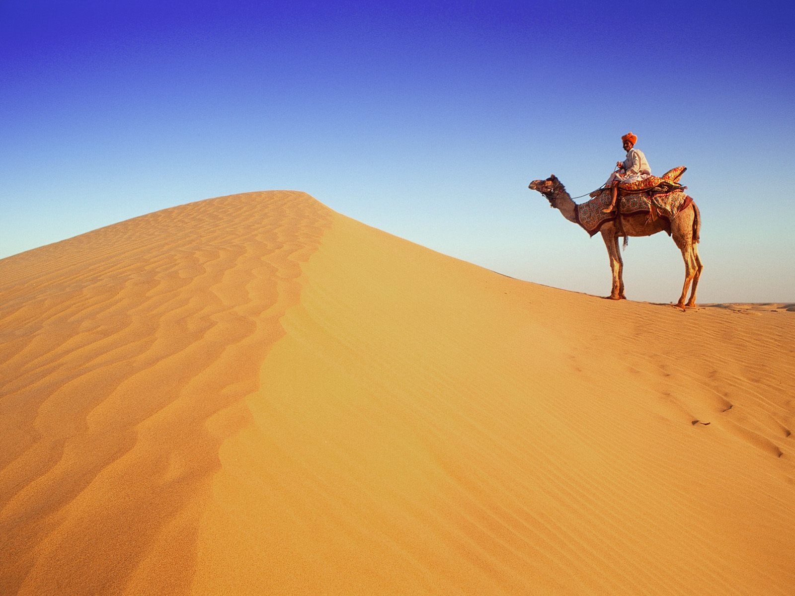 Image: Desert traveller wallpapers and stock photos. «