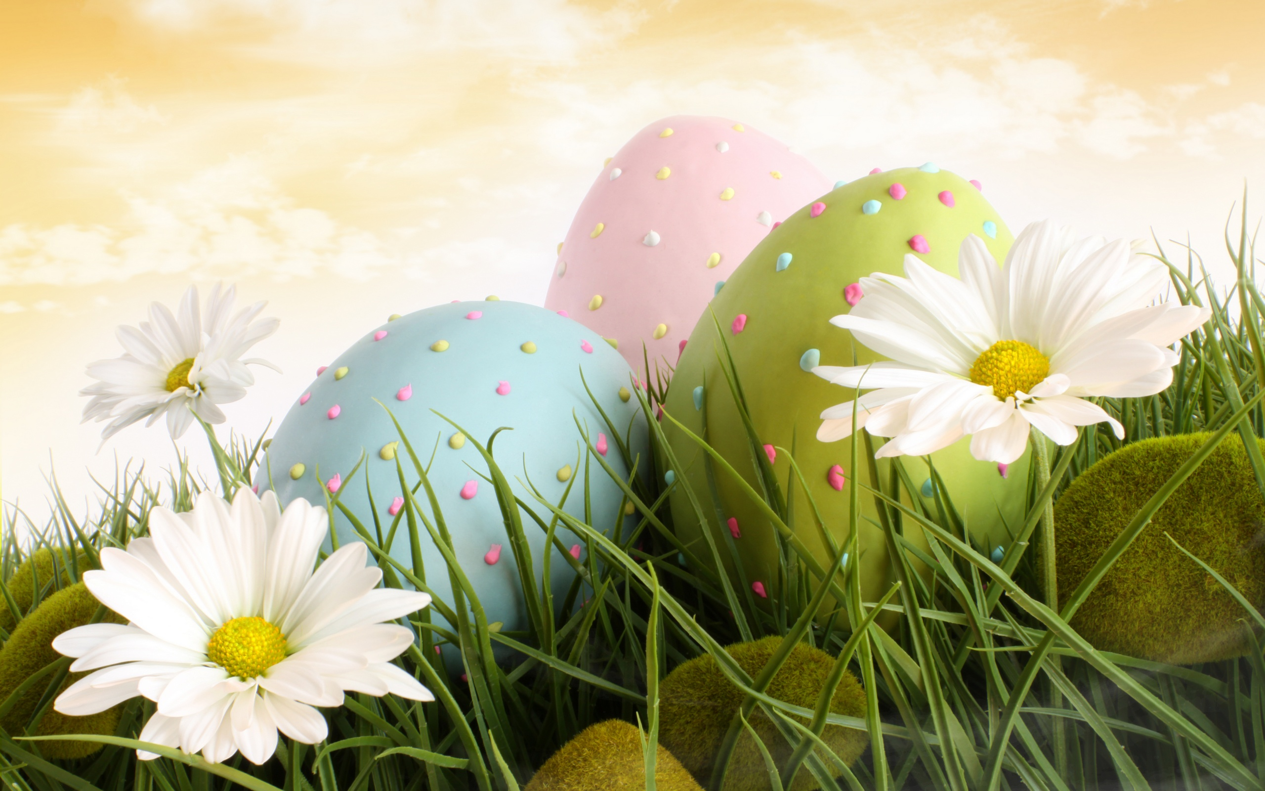 Dotted Eggs And Flowers Wallpapers