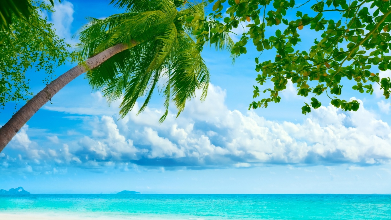 1366x768 exotic summer desktop pc and mac wallpaper