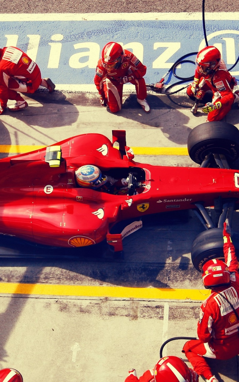 800x1280 Fernando Alonso Pit Stop Nexus 7 Wallpaper