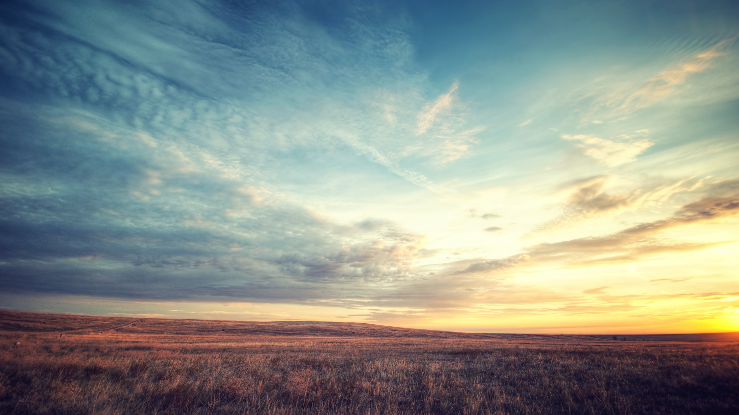 2560x1440 Field Grass Sunset Clouds Sky YouTube Channel Cover