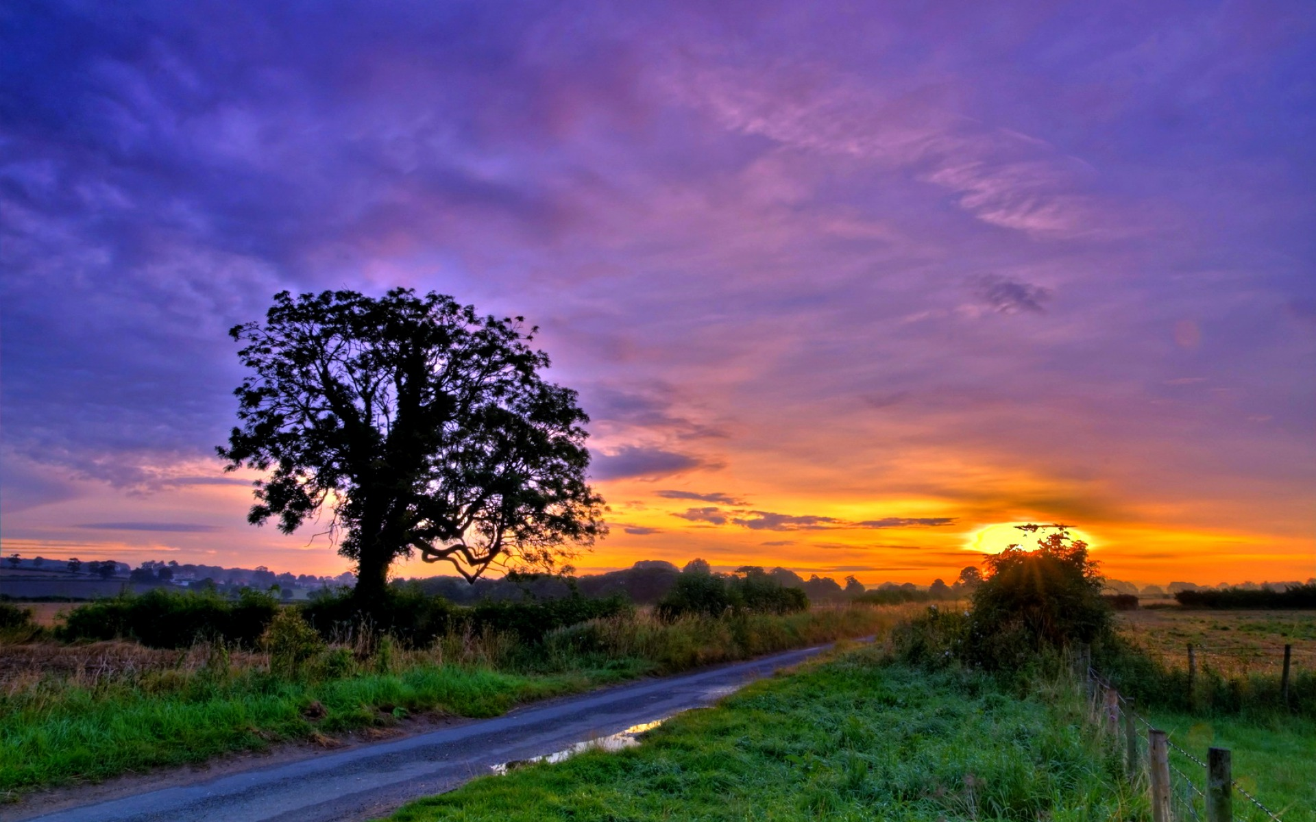 fields trees road fence sunset wallpapers fields trees
