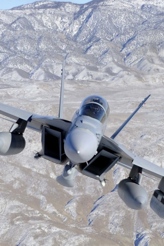 640x960 Fighter Jet in Valley