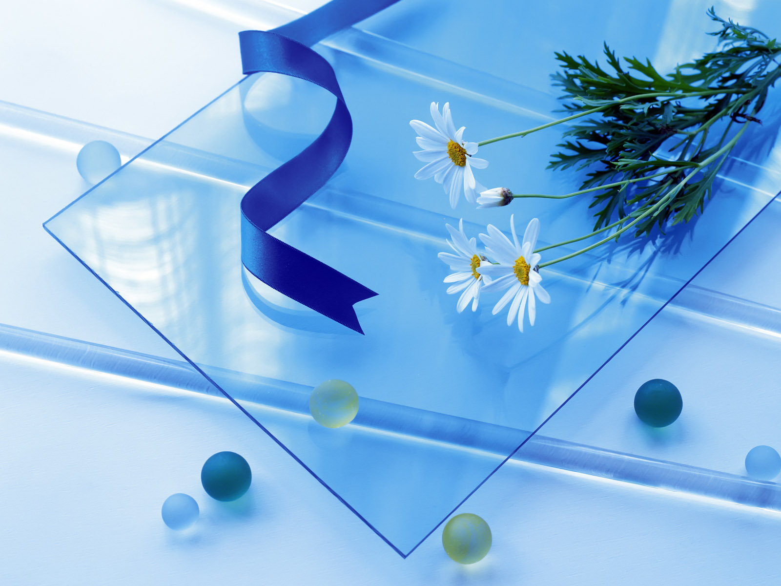 Image Flowers On Glass Wallpapers And Stock Photos