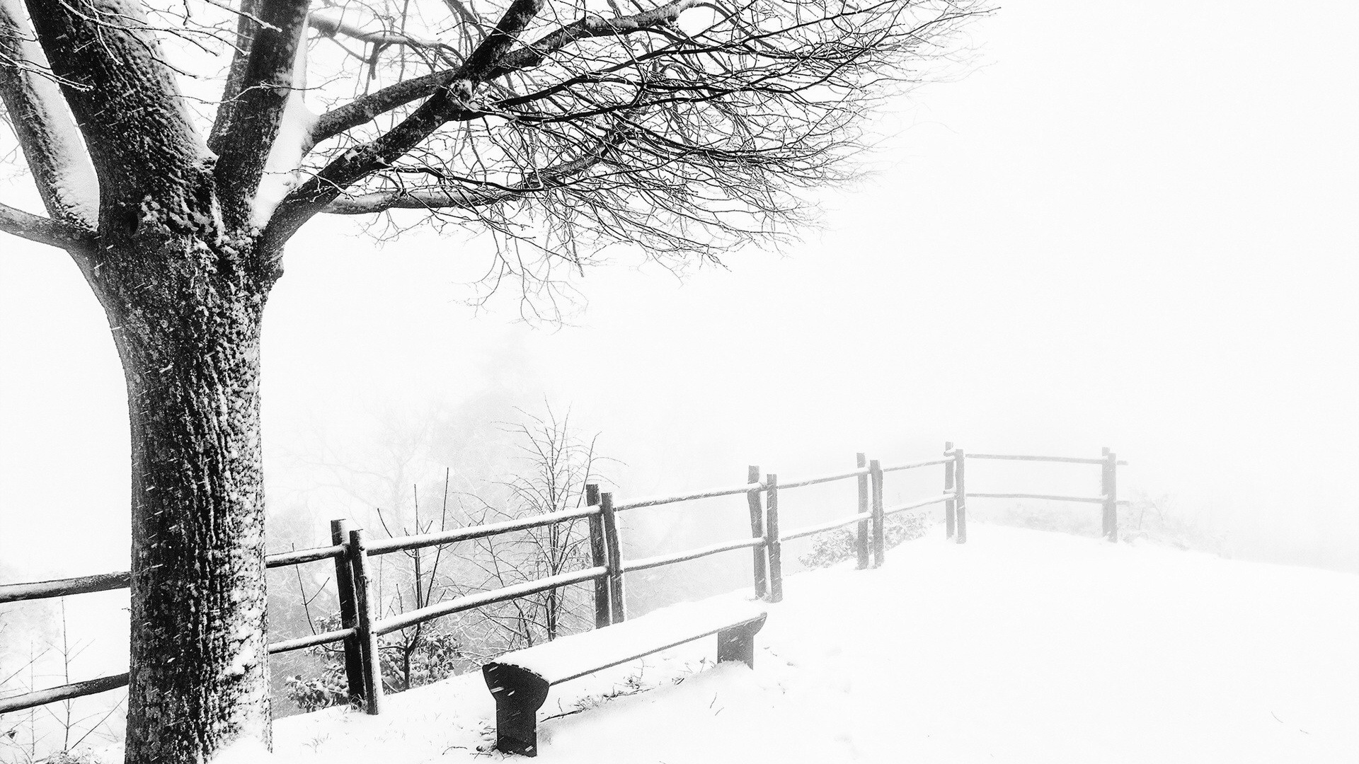 1920x1080 Foggy Cold Weather desktop PC and Mac wallpaper
