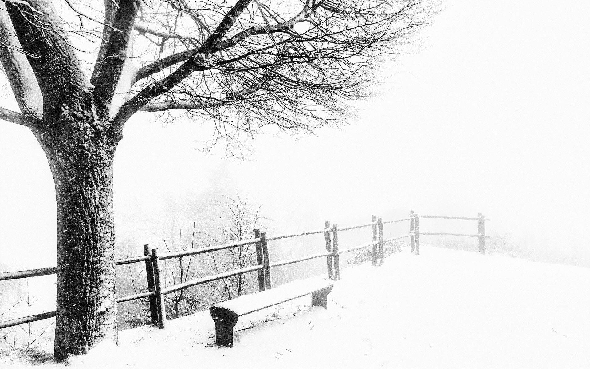 1920x1200 foggy cold weather desktop pc and mac wallpaper for Best windows for cold climates