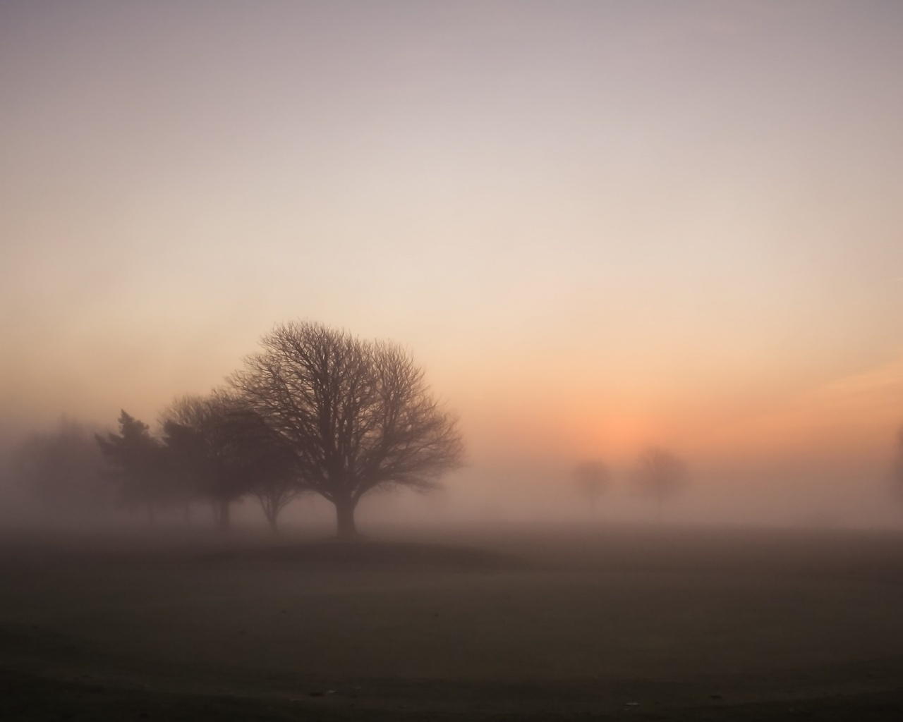 Say What Annoyed You Today - Page 2 Foggy-morning-sunrise_wallpapers_34938_1280x1024