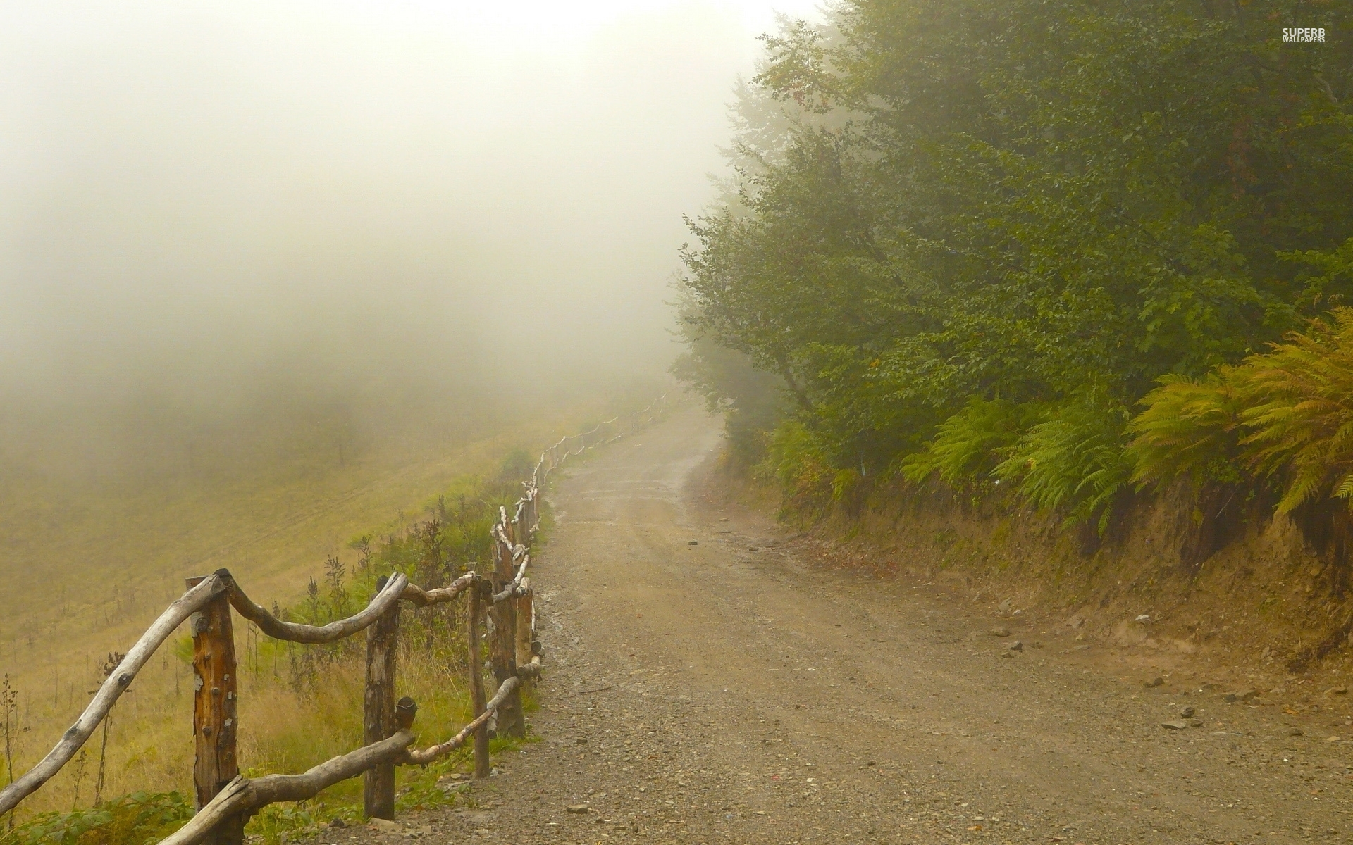 foggy path fences amp forest wallpapers foggy path fences