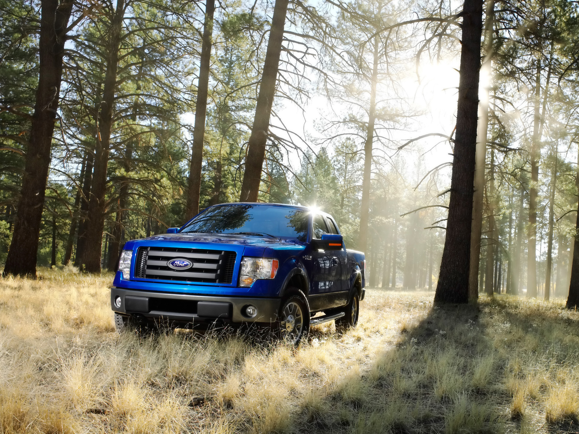 Ford F150 stock photos