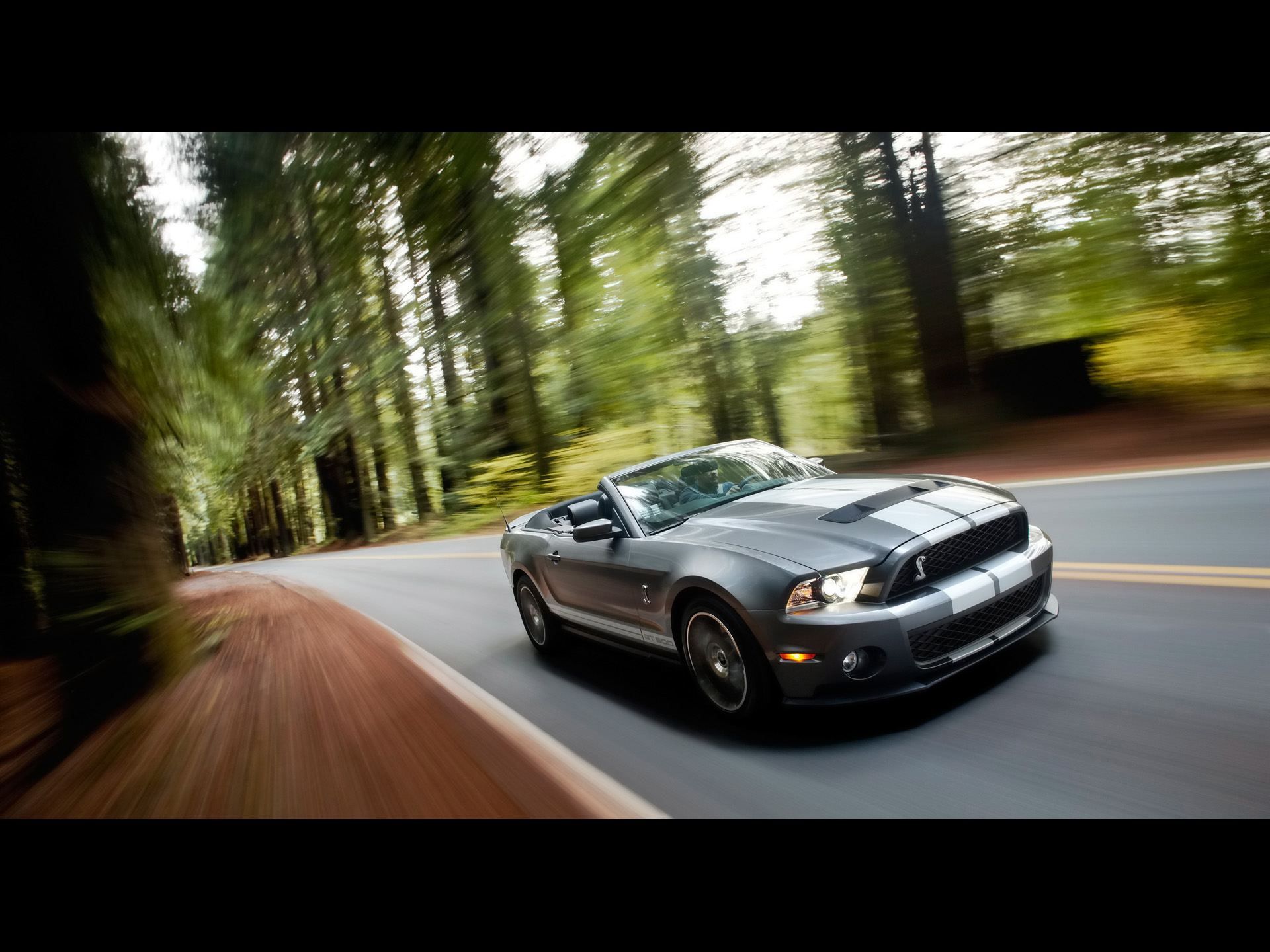 Ford Shelby Gt500 Speed 4 Wallpapers Ford Shelby Gt500 Speed 4