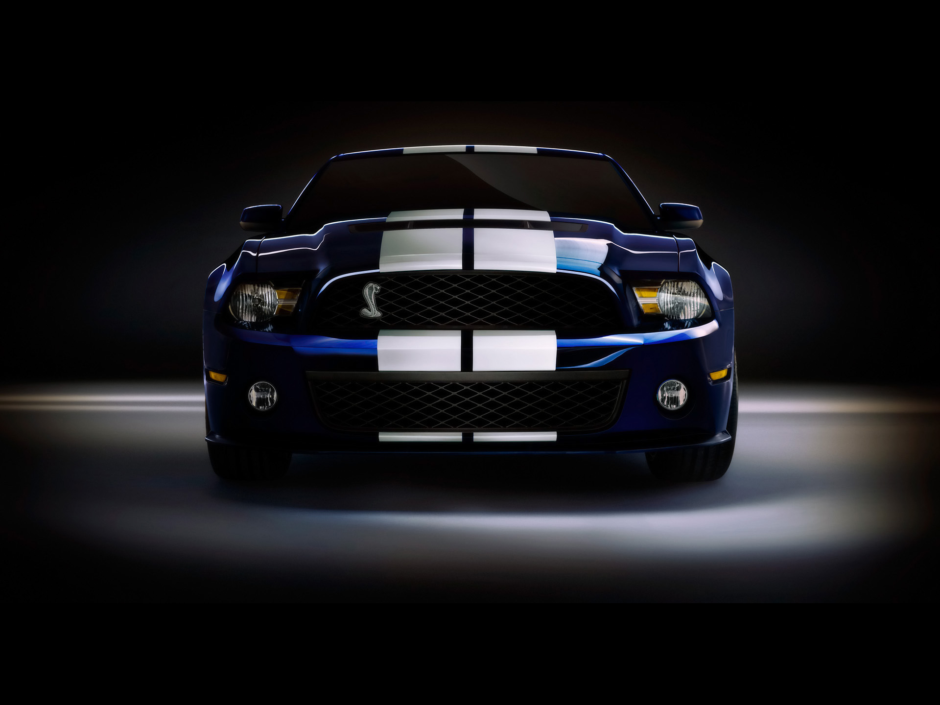 Ford Shelby GT500 Front Top wallpapers  Ford Shelby GT500 Front