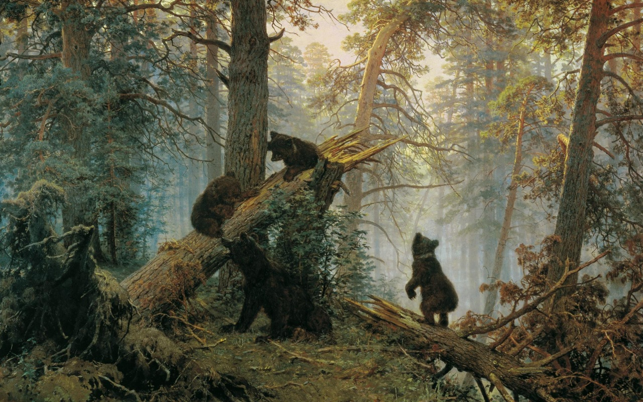 1280x800 Forest Bear Cute Kids Slope